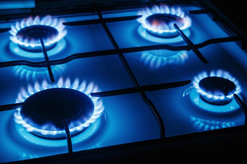 газовая плита рейтинг 2021 с газовой духовкой